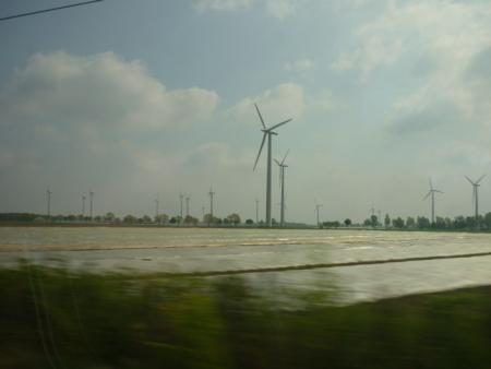 ¿Las energías verdes lo pondrán verde?